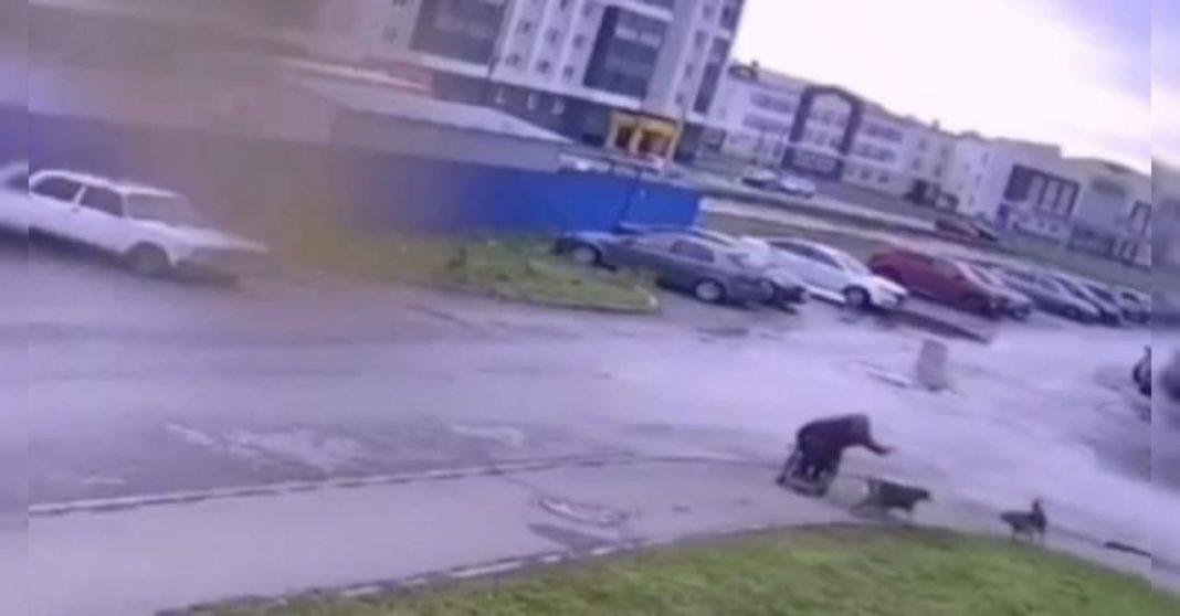 Hombre en silla de ruedas defiende a su perro