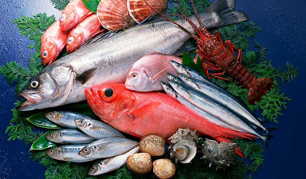 cuáles son los pescados más sanos