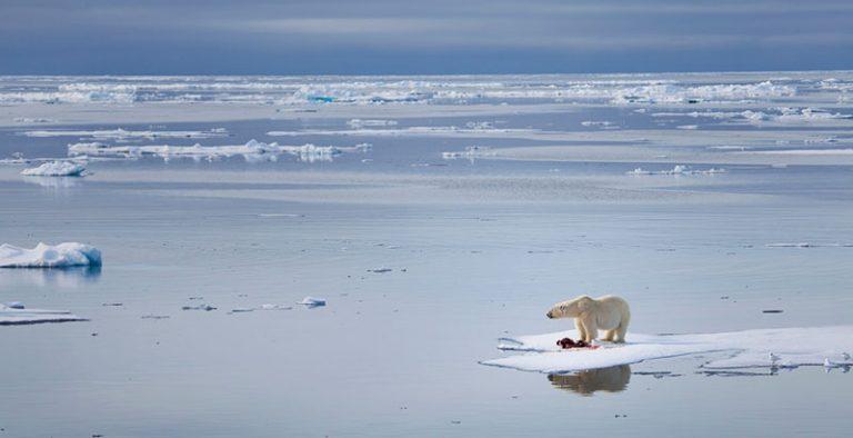 ONU: El mundo sigue un rumbo «catastrófico» por cambio climático