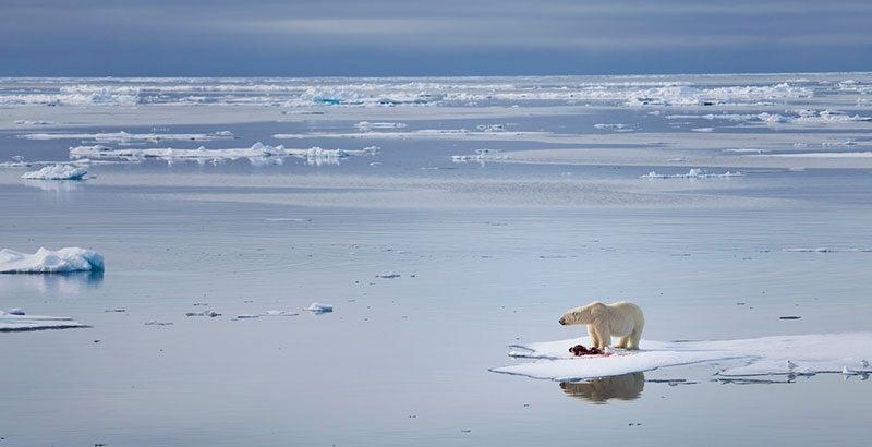 mundo catastrófico cambio climático
