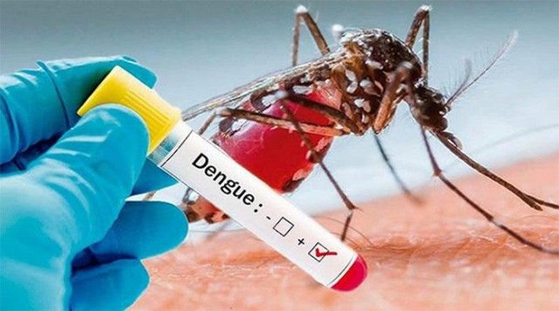 epidemia de dengue honduras 2021