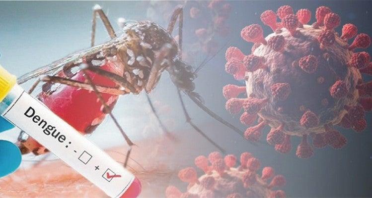 COVID-19 y dengue en Cortés